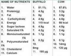 india,milk,buffalo milk,cow milk,packaged milk,cow,packaging