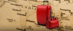 India,France,expatriation,survey,InterNations